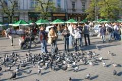 pielgrzymka_4_20120929_1256666583