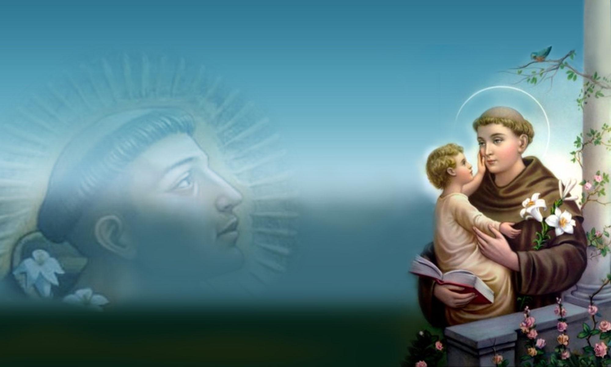 Parafia Wniebowzięcia Najświętszej Maryi Panny i Świętego Antoniego Padewskiego w Milejowie